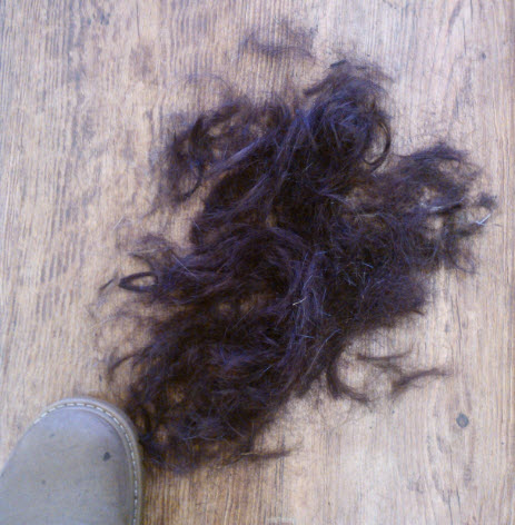 18th January 2014.  Two thirds of my hair cut off so I could have a proper style!  5 days later, the grand total of 3 people have noticed :o(