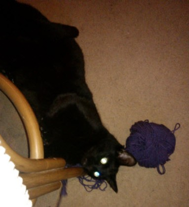 14th February 2014:  What you don't want to look down and see when you are trying to crochet...