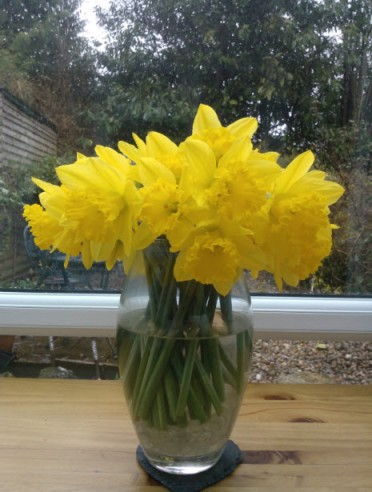 18th February 2014: How to make things seem a bit brighter :o)